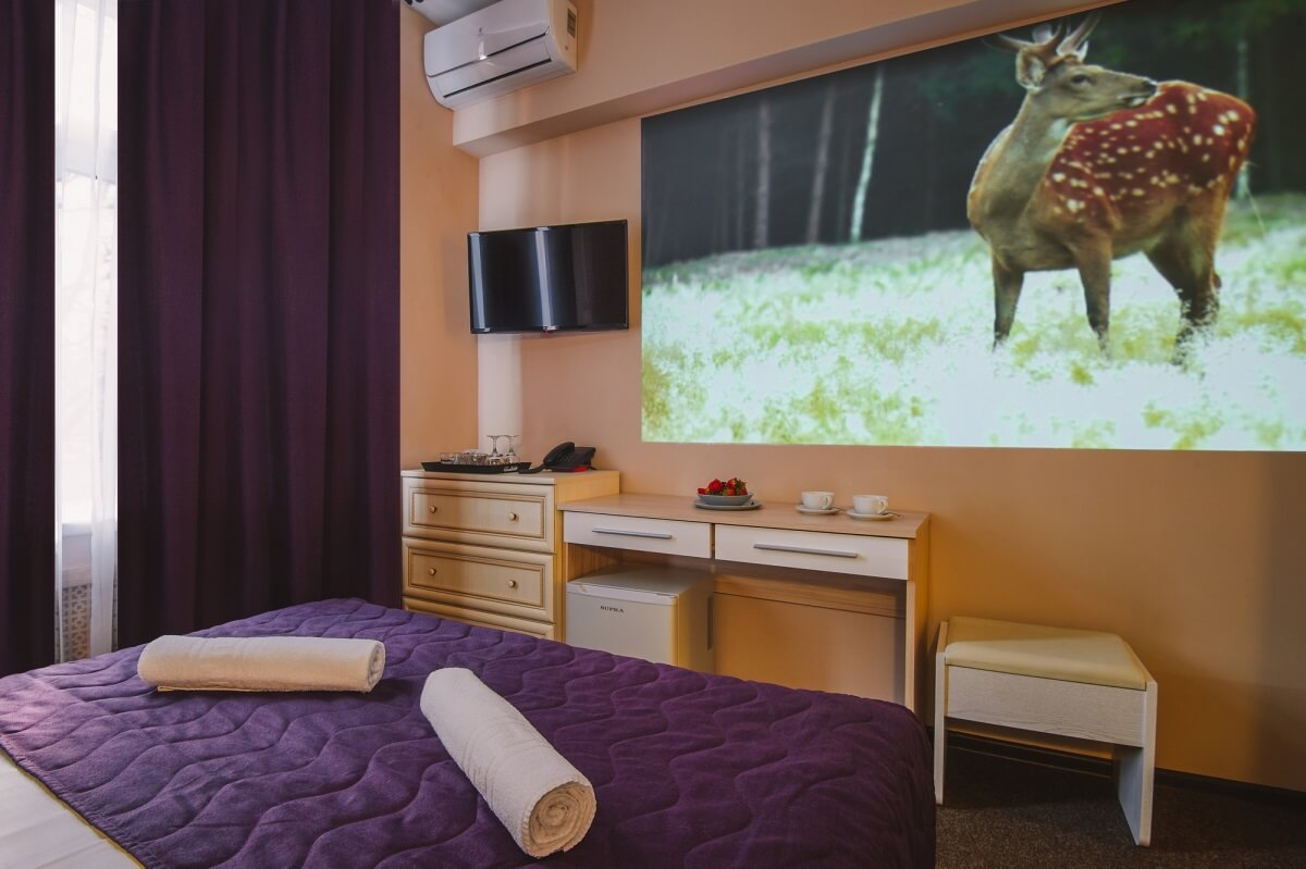 Standard double room with projection cinema